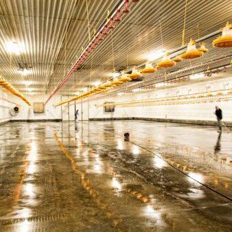 Landwirtschaft komsol versiegeln beton Boden Betonboeden